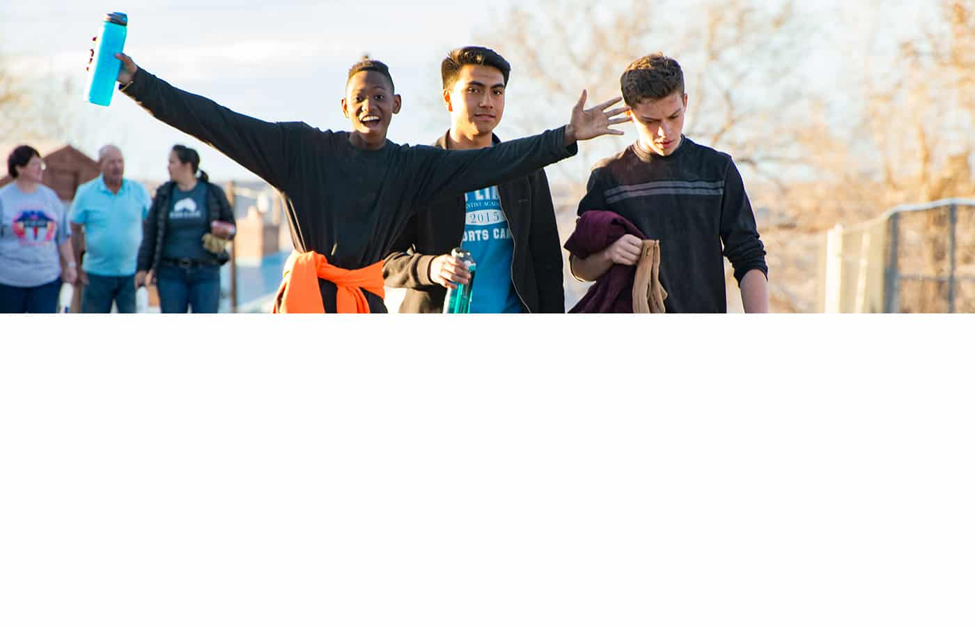 2017 Arizona Report
